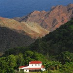 Old plantations on St Helena - SH gallery